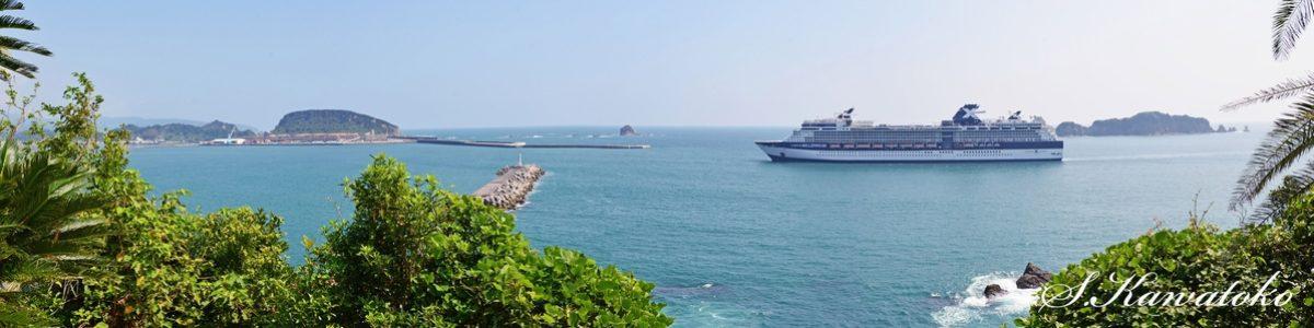 外国クルーズ船